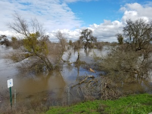 san-joaquin-river-is-full-too