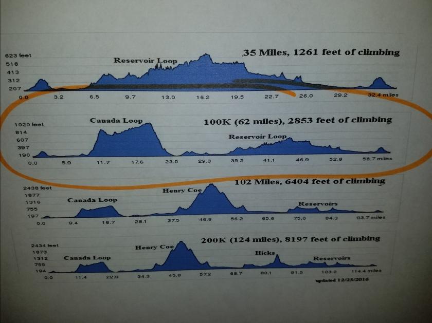 Tierra Bella metric graph