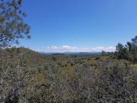 looking toward high country